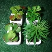 Suculenta Mini Planta Artificial Com Vaso Branco Mudas Enfeite Festa Kit Com 4 Unid