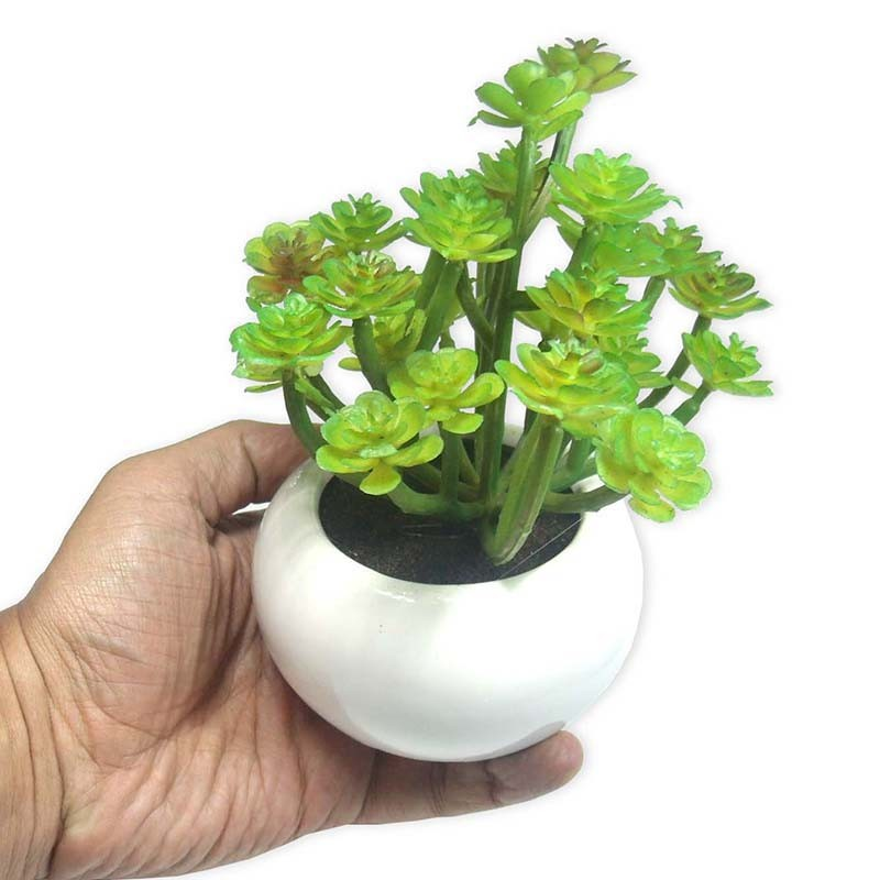 Suculenta Planta Artificial Com Vaso Branco Ornamentacao Festa Enfeite Jardim Verde (SH-3 MOD2)