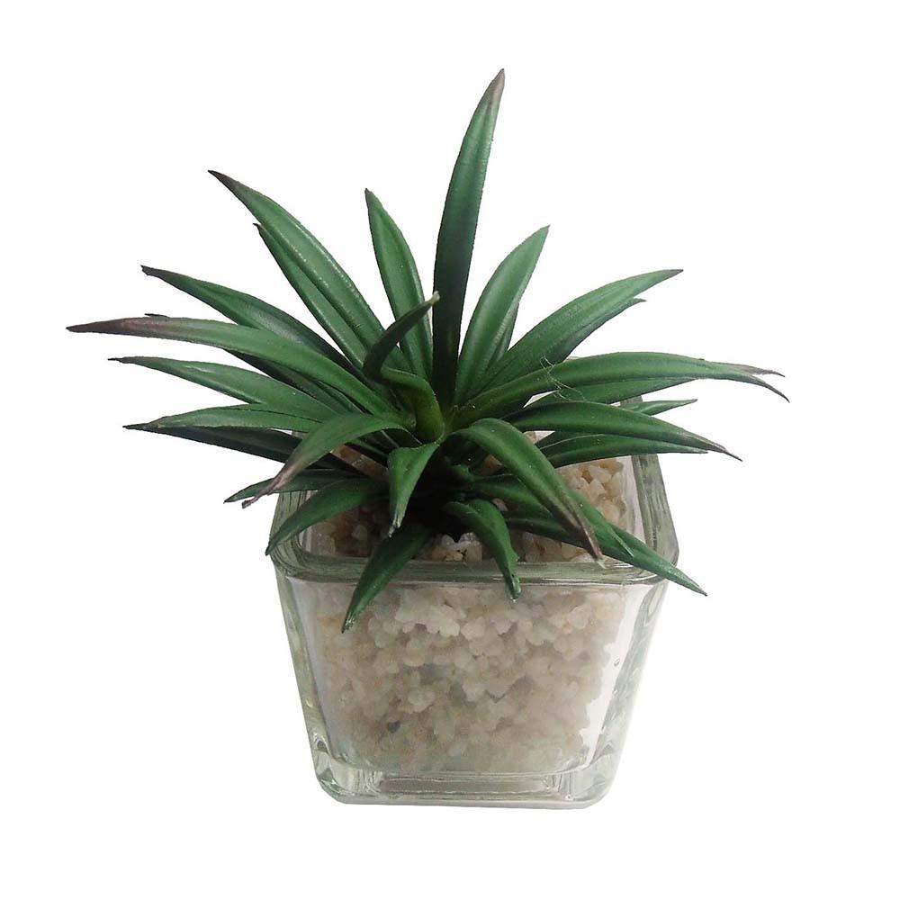 Suculenta Mini Planta Artificial Com Vaso Vidro Mudas Enfeite Festa Kit Com 6 Unid