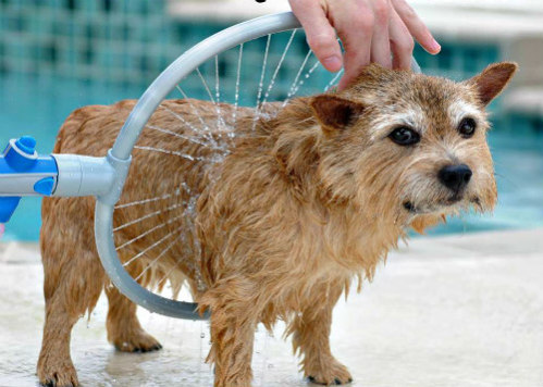 Woof Washer 360 Lava Jato Para Banho Caes Cachorros Pets (Bsl-lac-1)