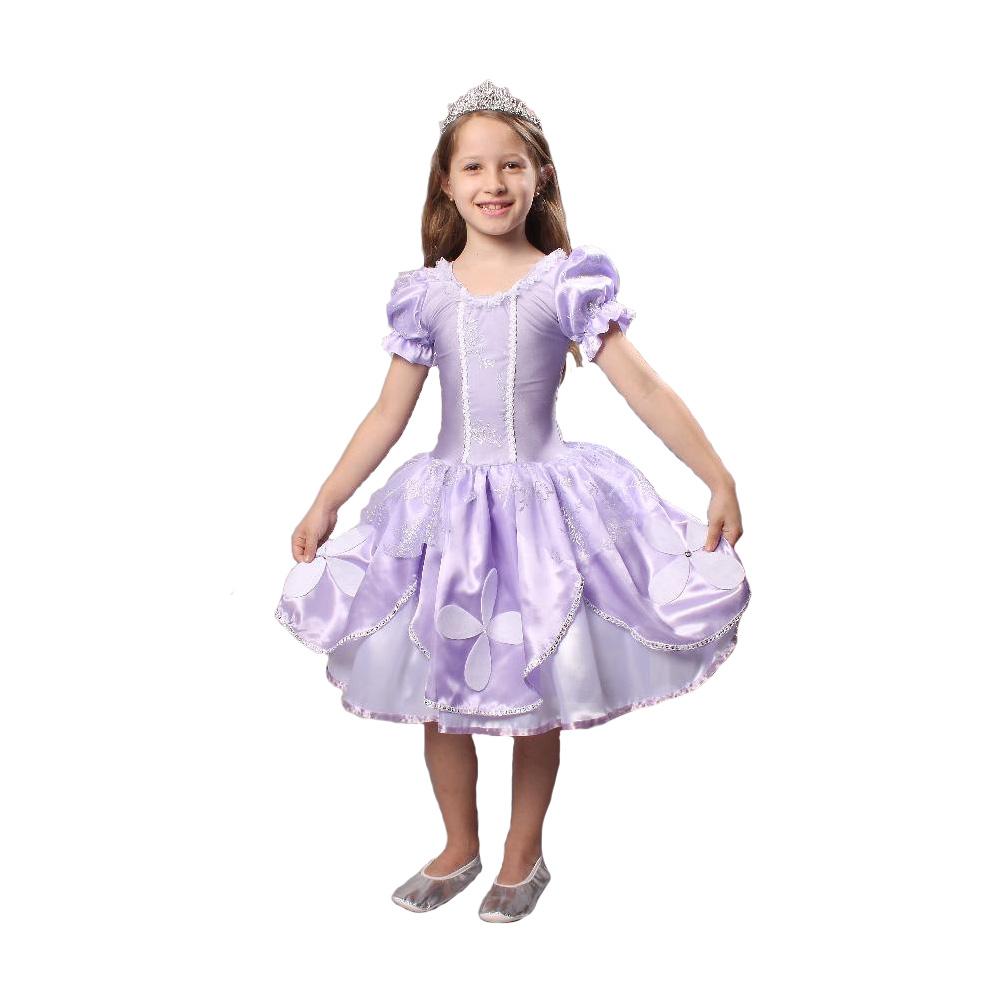 Fantasia Princesa Sofia - Infantil