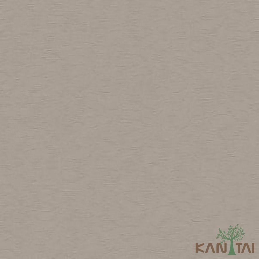 Papel de Parede Kan Tai Vinílico Coleção Stone Age 2 Textura Bege claro, Detalhes, Brilho