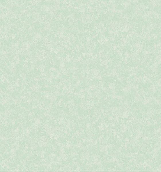 Papel de Parede Kan Tai  Vinílico Coleção Poet Chart 3 Textura verde claro, leve brilho