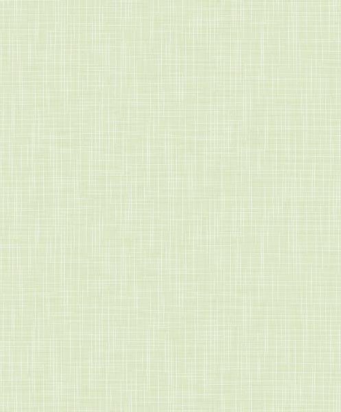 Papel de Parede Kan Tai TNT Infantil Coleção YoYo Textura Verde, Detalhes, Leve Brilho
