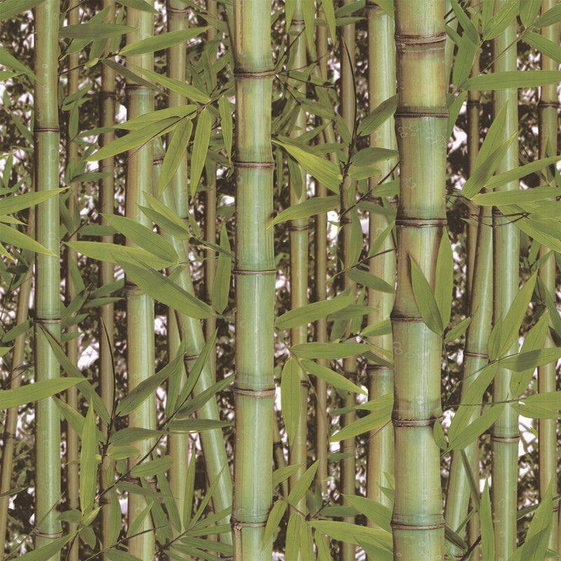 Papel de Parede Kan Tai Vinílico Coleção Neonature 5 Bambú Folhagem Verde