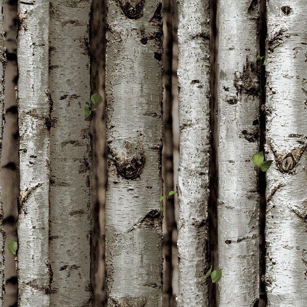 Papel de Parede Kan Tai Vinílico Coleção Neonature 5 Galhos Troncos Cinza, Marrom
