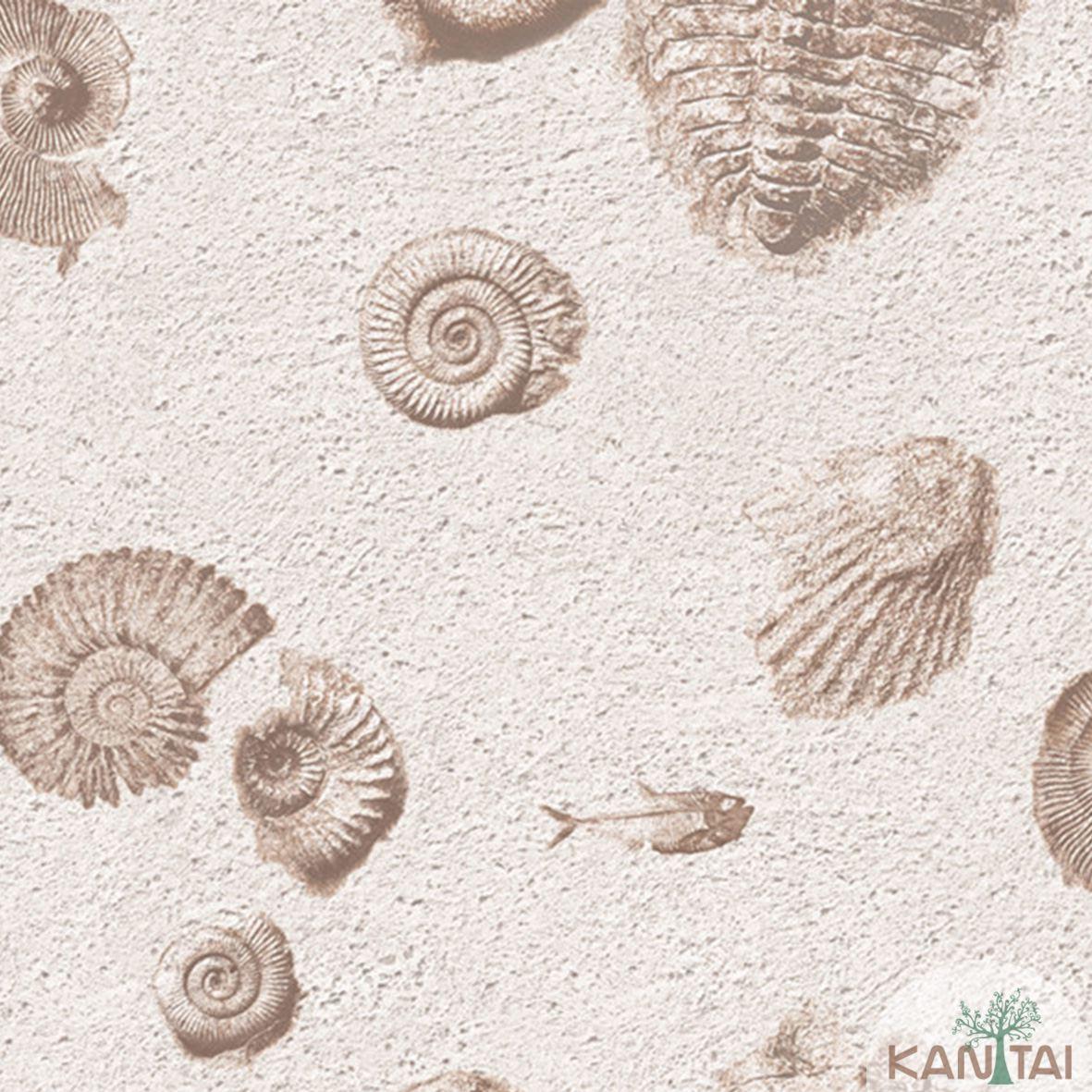 Papel de Parede  Vinilico Kan Tai Coleção Neonature III 3D Conchas Bege, Marrom