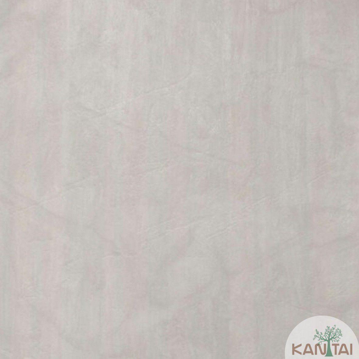 Papel de Parede Kan Tai Vinilico Coleção Style Cimento Queimado Cinza