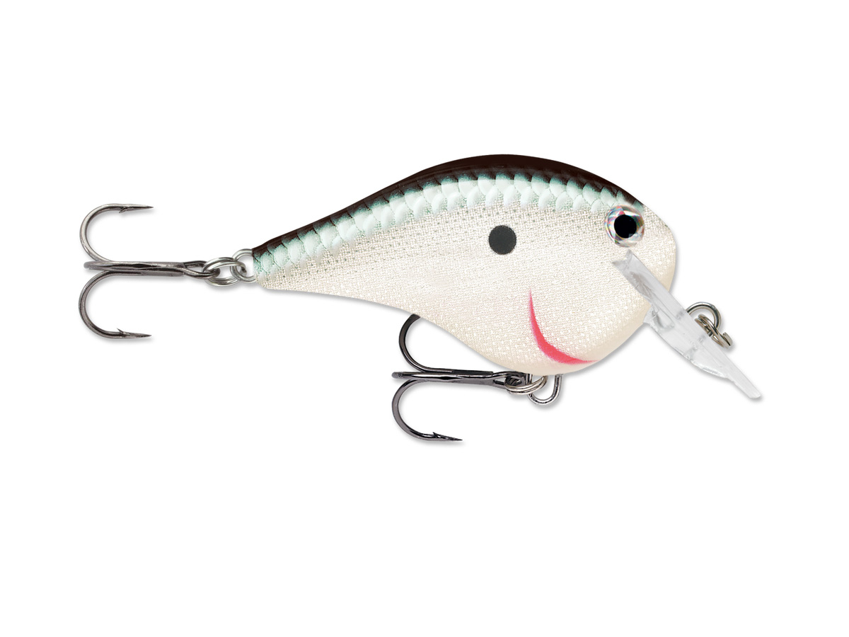Isca Rapala DT-FAT Dives-To (6cm - 14gr)  - Comprando & Pescando