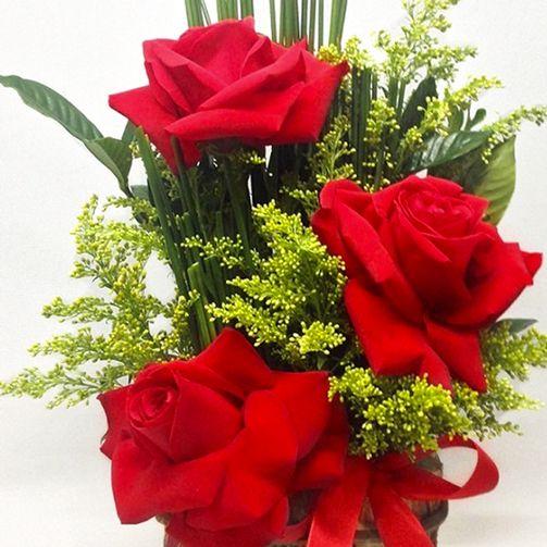 Arranjo 3 Rosas Colombianas