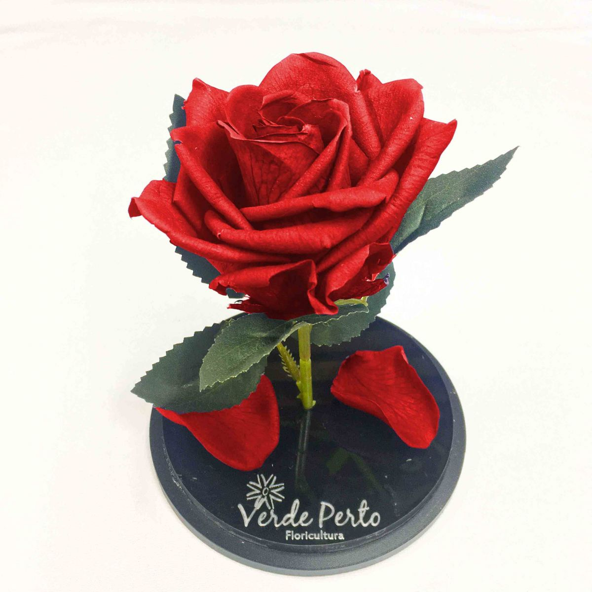 Magic Rose Red