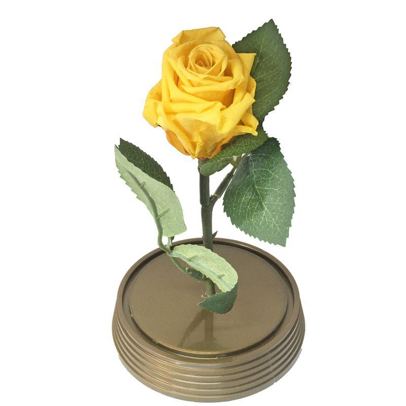 Mini Magic Rose Amarela