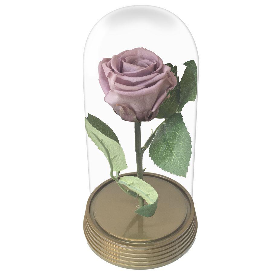 Mini Magic Rose Lilás