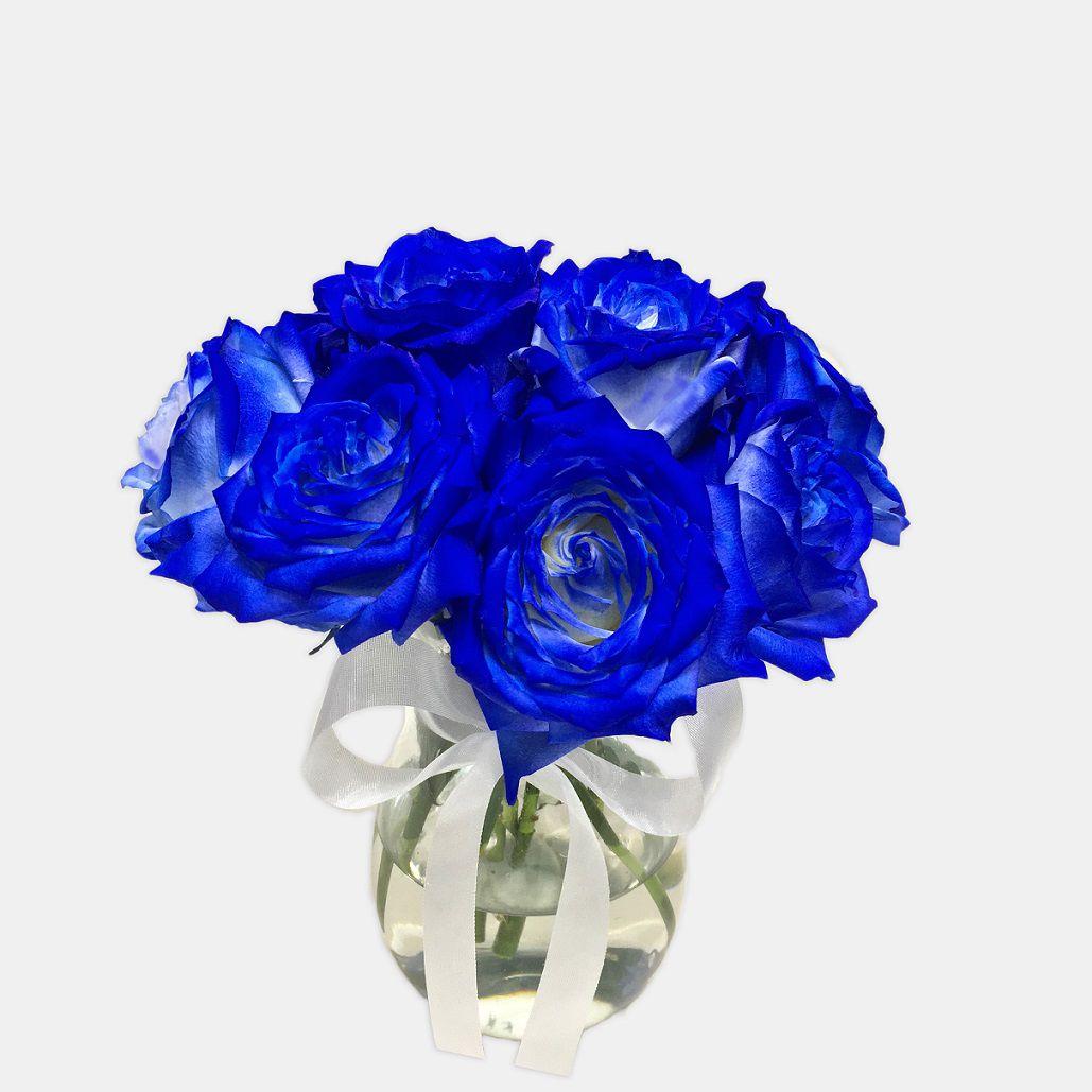 Surpresa de Rosas Azuis