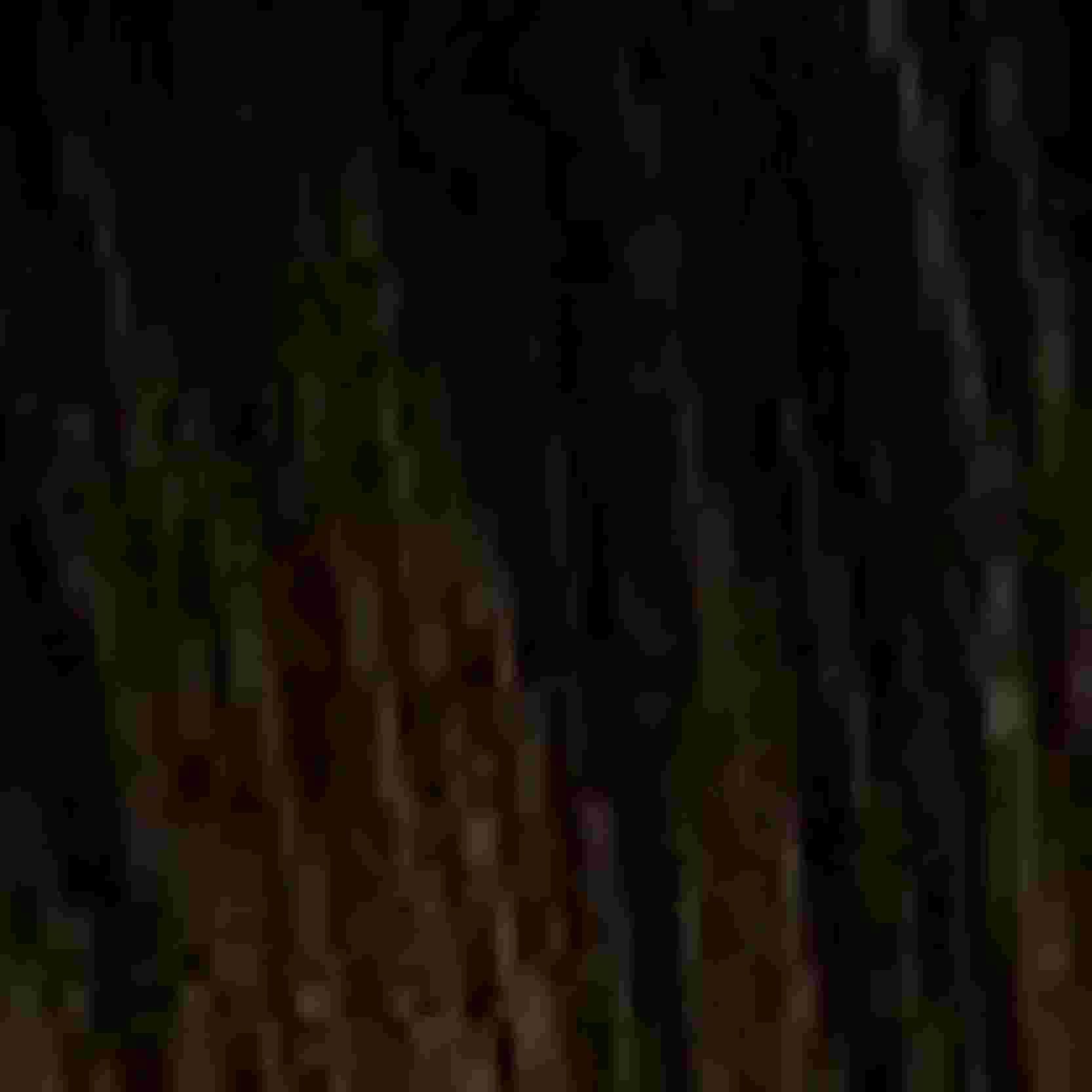 Tinta Igora Color10 60g - Cor 3.0 - Castanho Escuro