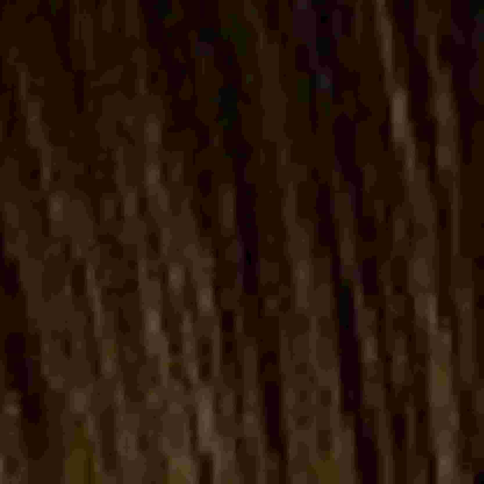 Tinta Igora Color10 60g - Cor 4.6 - Castanho Médio Marrom