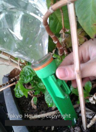 Gotejador de água para Planta e Flores - Dura até 10 dias  - Super Utilidades