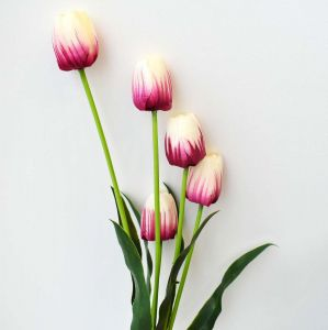 Buque De Flor Tulipa Com Folhas - 57447