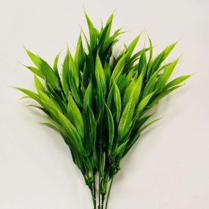 Capim Verde - 56565