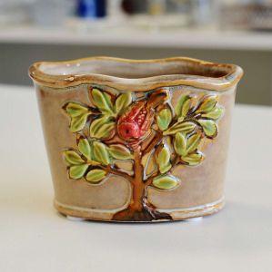 Mini Vaso Árvore Caqui - 57157