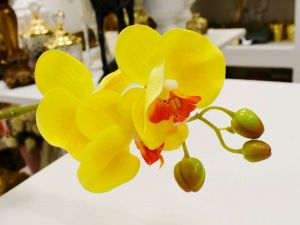 Orquídea Toque Real 03 Flores 3D Amarela - 56838