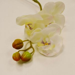 Orquídea Toque Real 03 Flores 3D Branca - 56837