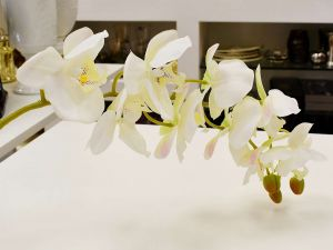 Orquídea Toque Real Com 09 Flores 3D Branca - 56840