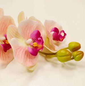 Orquídea Toque Real Com 09 Flores 3D Rosa Claro - 56841