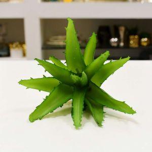 Suculenta Verde - 56848