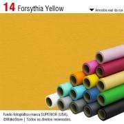 Fundo SUPERIOR | 14 Forsythia Yellow