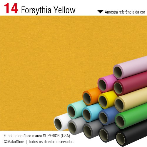 Fundo SUPERIOR | 14 Forsythia Yellow