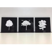 Trio De Quadros Árvores Em Acrílico