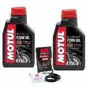 Kit Retentor Bengala Bmw F800r até 2014 Ariete + 2 Litros Motul Fork Oil 7.5w 100% Sintético
