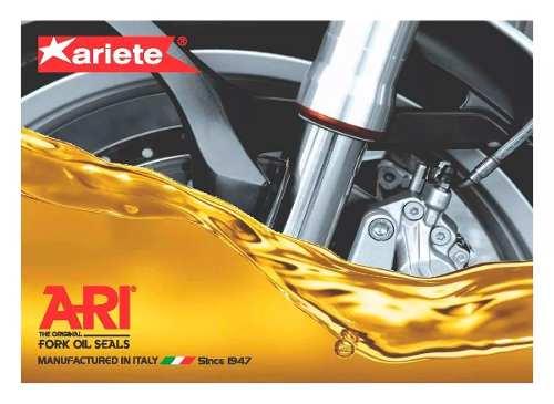 Retentor Bengala Bmw G650 Gs/sertão 2011-2014 Ariete Par
