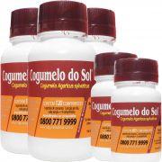 Cogumelo do Sol®  Agaricus sylvaticus - 03 FRASCOS Ganhe 2 Frascos com 60 Comprimidos