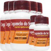 Cogumelo do Sol®  Agaricus sylvaticus - 05 FRASCOS Ganhe 2 Frascos com 60 comprimidos