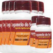Cogumelo do Sol®  Agaricus sylvaticus - 06 FRASCOS Ganhe 2 Frascos com 60 comprimidos