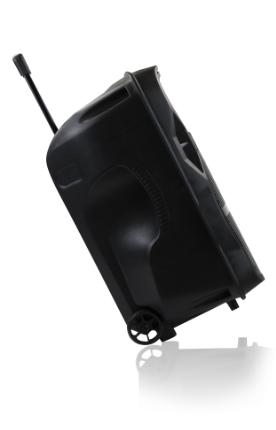 Frahm CM 600 BT Caixa Amplificada Multiuso