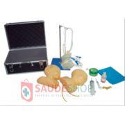 Modelo de Simulador de Cabeça Infantil para Punção Venosa - Mod.ES-6069 - Edutec