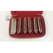 Kit Gaita Hering Free Blues 70120 6 Harmonicas