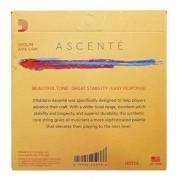 Encordoamento D'addario Ascenté Para Violino 4/4 - A310