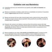 Gaita Boca Harmônica Hering Vencedora Dó Sol 64 Vozes 7664cg