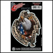 Planet Waves Guitar Tattoo Freedom Eagle GT77016