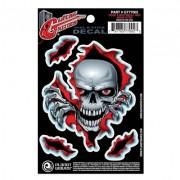 Planet Waves Guitar Tattoo Peek a Boo Skull GT77002