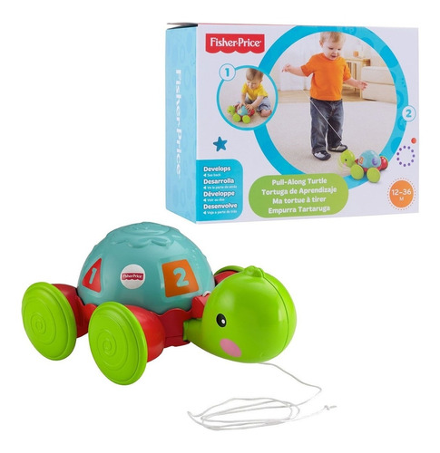 Fisher Price Brinquedo Baby Empurra Tartaruga Y8652