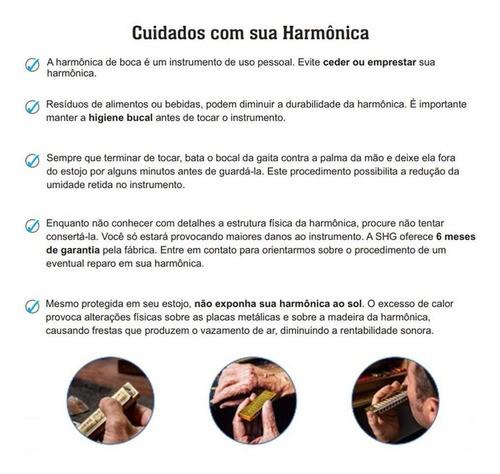 Gaita Boca Harmônica Hering Seductora Dó Mi 64 Vozes 7964ce
