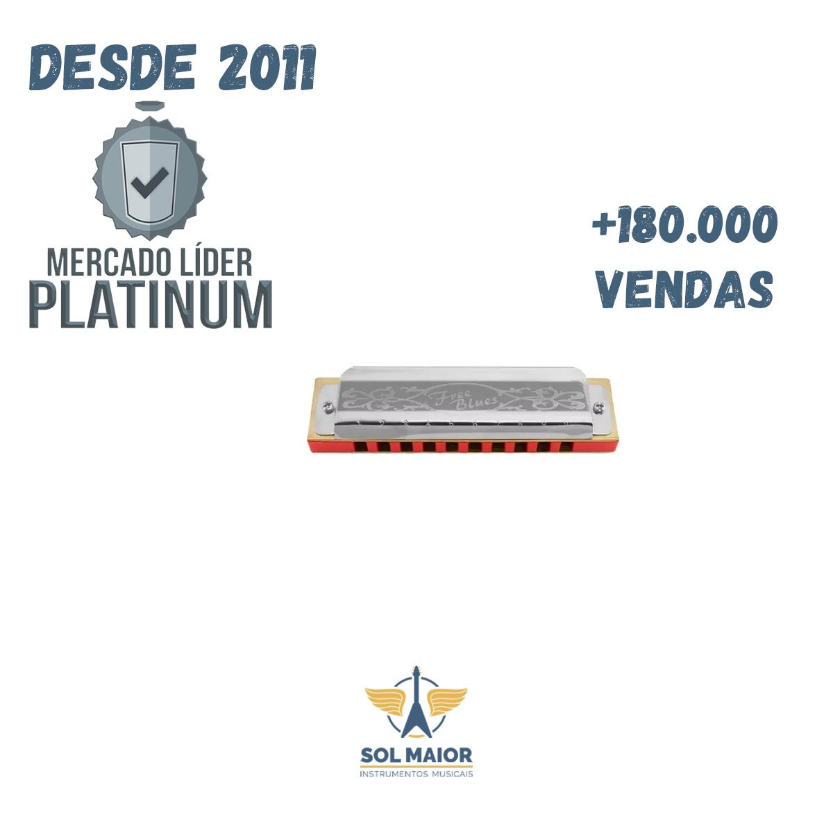 Gaita De Boca Hering Diatônica Free Blues C Dó 7020c + Nfe