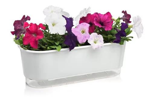 Kit Reposição Para Jardineira Flor Autoirrigável 40cm Raiz