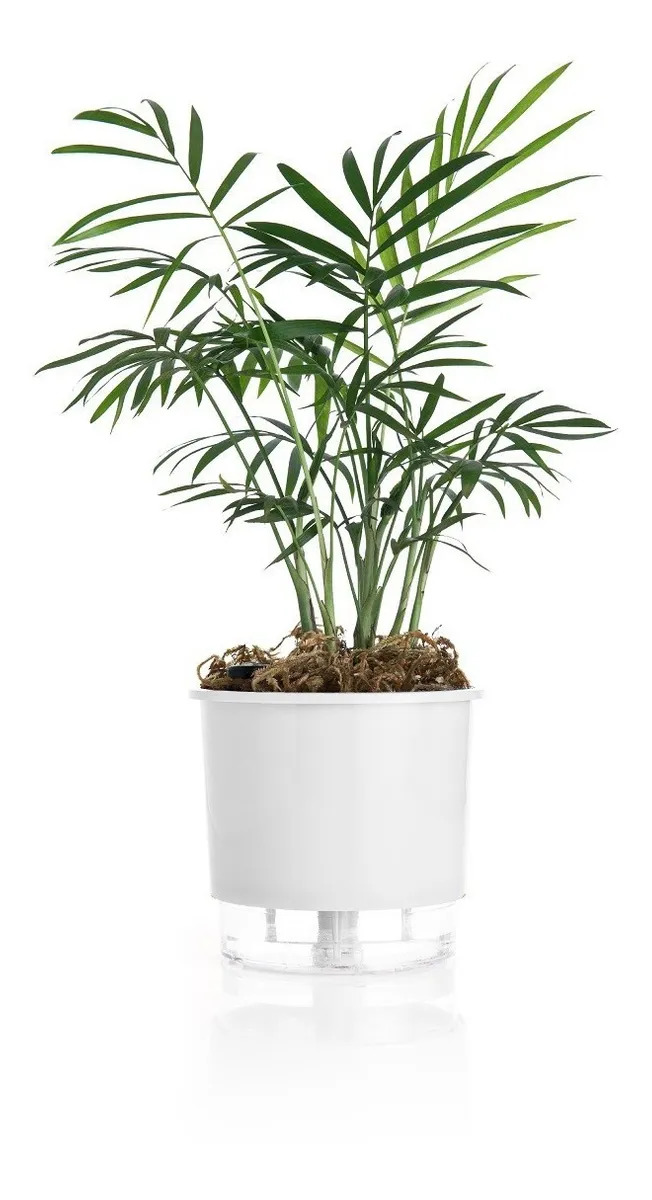 Vaso Raiz Auto Irrigável 12cm N2 Autoirrigável Planta Cores
