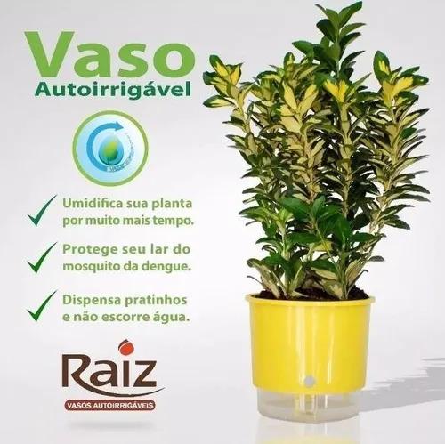 Vaso Raiz Auto Irrigável T04 21cmx18cm Cor Preta / Branco